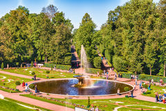View of the Peterhof Palace and Gardens, Russia Stock Image