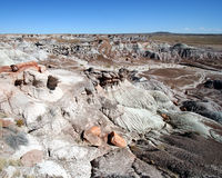 A View of the Petrified Forest Stock Photo