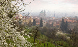 View from Petrin to Prague at spring Royalty Free Stock Photos
