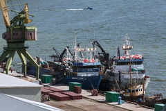 View of Petropavlovsk-Kamchatsky port and ships crabber at the pier Royalty Free Stock Photo