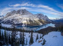 View of Peyto Lake in Banff National Park royalty free stock image