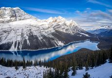 View of Peyto Lake in Banff National Park royalty free stock photo