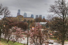A view of Philadelphia City center,blossoms in foreground Stock Photo