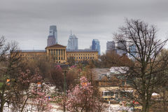 A view of Philadelphia City center with blossoms in front Royalty Free Stock Images