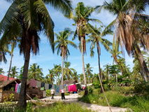 View of Philippines. Coconut tree against the blue sky background in Philippine island-Malapascua. Villagers drying clothes under sunshine Stock Image