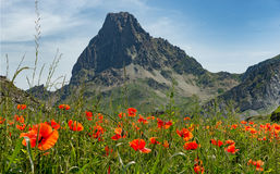 View of the Pic du Midi d`Ossau in the French Pyrenees with popp Stock Image