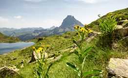 View of the Pic du Midi d`Ossau in the French Pyrenees. A view of the Pic du Midi d`Ossau in the French Pyrenees Stock Photo