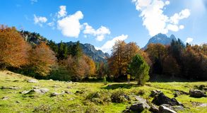 View of Pic Du Midi Ossau, France, Pyrenees in autumn royalty free stock image
