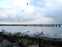 View of the pier and the Baltic sea Stock Photography
