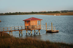 The view of a pier and a marsh from Bowen's Island in Charleston, Sc. Stock Images