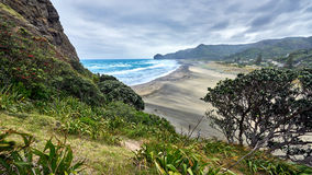 View of Piha beach in New Zealand. From the slopes of Lion`s rock royalty free stock image