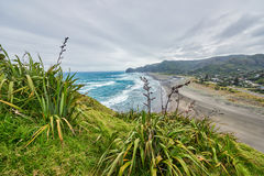View of Piha beach in New Zealand. From the slopes of Lion`s rock stock images