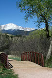 A view of Pikes Peak. This is a view of Pikes Peak framed by a tree. Pikes Peak is noted for being the first tall peak that pioneers saw when they were crossing Stock Image
