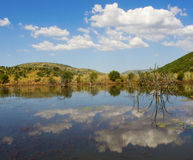 View of Pilansberg dam Royalty Free Stock Image