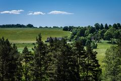 Green farmer fields on the back. View of pine tops in the foreground, green farmer fields on the back and meadows overgrown with bushes and trees in the middle royalty free stock photography