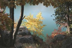 A view on Pink Lake. Autumn is always full of discoveries.  This lake`s name is Pink Lake but the color is beautiful turquoise Stock Images