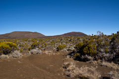 View of the Piton de la Fournaise Stock Photos