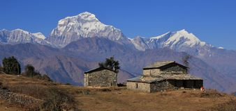 View from a place near Gorepani, Nepal. Old farmhouse and majestic mountain Dhaulagiri, Nepal royalty free stock image