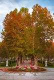 Plane trees avenue and the music pavilion in Zrinjevac park in Zagreb, Croatia, in autumn. View of the plane trees avenue and the music pavilion, water fountains stock photos