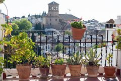 Balcony view in Albaicin. View of plants along a railing from a balcony overlooking the district of Albaicín, located in the province of Granada, Andalusia Royalty Free Stock Images