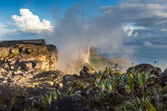 The view from the plateau of Roraima on the Grand Sabana - Venezuela, Latin America Stock Photo
