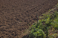 View of ploughed agricultural field Stock Photos
