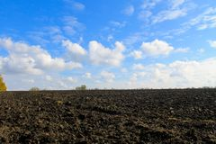 Plowed field on autumn Stock Images