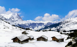 The view point of the Alps Mountains Stock Photography
