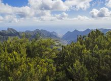View point in anaga mountain sharp peaks with green cypress bush. And dramatic blue sky white clouds background, tenerife  canary island spain Stock Photography