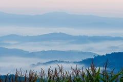 View point at Doi Sa-Ngo, Chiang Sean, Chiang Rai Province Royalty Free Stock Photo
