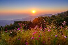 Free View Point From Doi Mae Taman Mountain On Morning Stock Image - 170441301