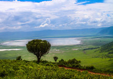 View point overlooking lake in Ngorongoro Crater Royalty Free Stock Photo
