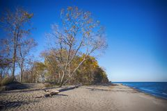 View of Point Pelee National Park beach in the fal, lake Erie, O Royalty Free Stock Image