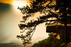 The View Point of Phu Kradueng National Park with trees, mountain and and sunset light. In the Si Than sub-district of Amphoe Phu Kradueng; Loei Province; is Royalty Free Stock Photography