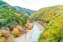 View point of the river and forest in autumn season at arashiyam Stock Images