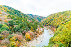 View point of the river and forest in autumn season at arashiyam. A,Japan Stock Image