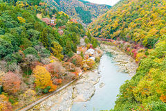 View point of the river and forest in autumn season at arashiyam Stock Photography