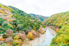 View point of the river and forest in autumn season at arashiyam. A,Japan Royalty Free Stock Image