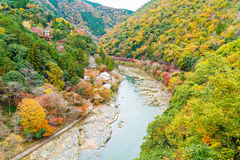 View point of the river and forest in autumn season at arashiyam Royalty Free Stock Images