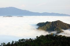View point wetlands sea fog on the hill. Royalty Free Stock Photo