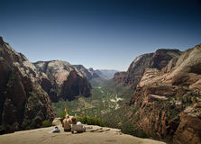 View point - Zion park Royalty Free Stock Photo