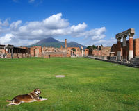 View of the Pompei ruins and Vesuvius volcano. Royalty Free Stock Photo