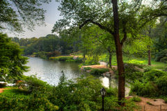 View at a pond in Central Park, New York Royalty Free Stock Photos
