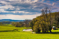 View of a pond on a farm in rural York County, Pennsylvania. Stock Images