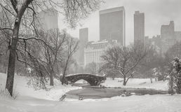 View of the Pond, Gapstow Bridge and Manhattan skyscrapers durin. Frozen Pond and heavy snowfall in Central Park with a view of Gapstow Bridge and Manhattan high Stock Image