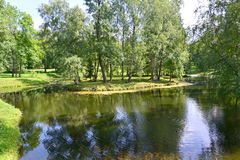 View of a pond in Gatchina park Stock Photography