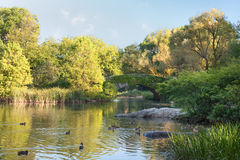 View on the pond in the NY Central Park Royalty Free Stock Images
