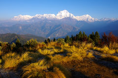 View from Poon Hill 3210m Stock Images