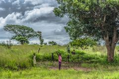 View of poor africans children playing in the grass of the field, expressive girl greets, in Angola. Malange / Angola - 12 08 2018: View of poor africans stock photography