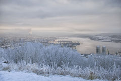 View of the port, the city and the bay from the hill in winter. View of the port, the city and the bay from the hill in the winter, in the foreground bushes in Royalty Free Stock Photography
